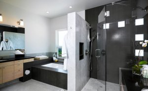 Modern Master bathroom Designs