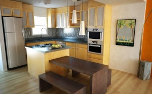 Small Designer kitchen